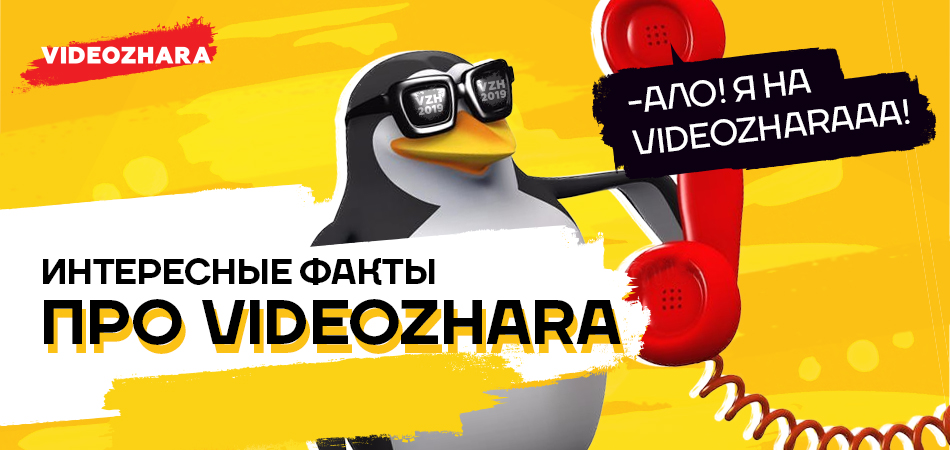 ИНТЕРЕСНЫЕ ФАКТЫ PRO VIDEOZHARA